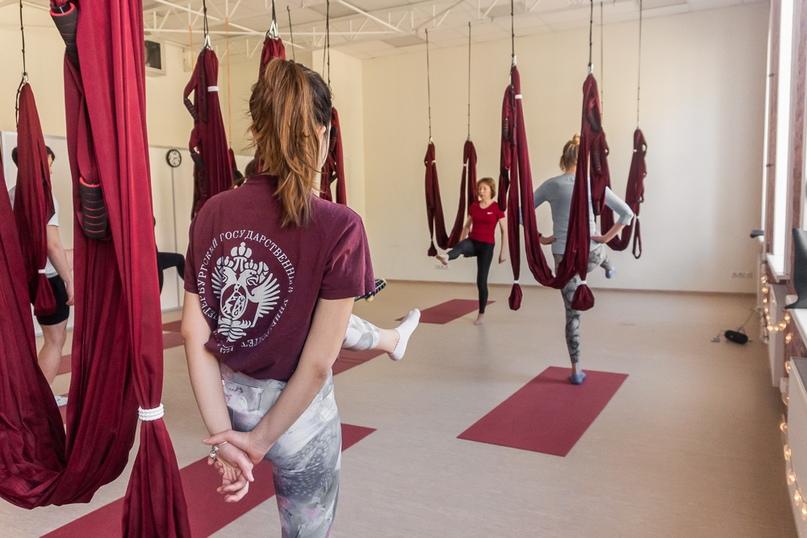 Йога в гамаках обучение
